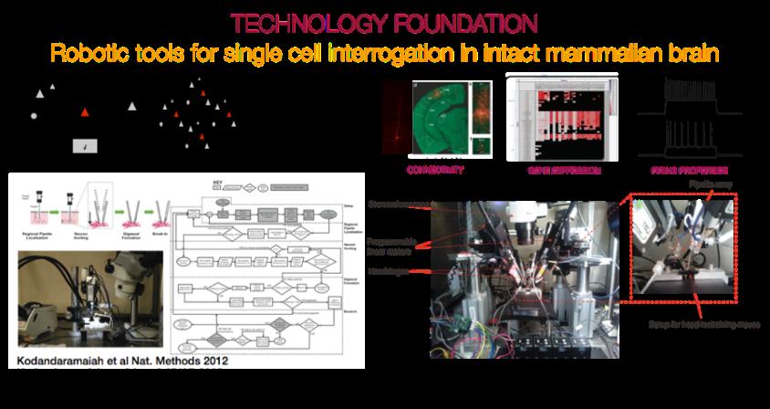 Technology foundation